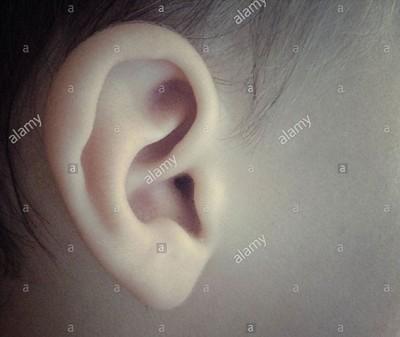 A baby's ear © Queralt Sunyer